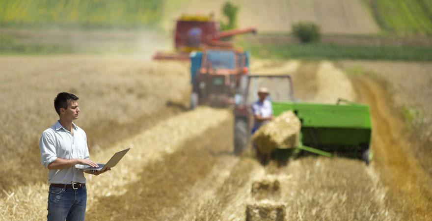 agricultura-y-employer-branding-880.jpg