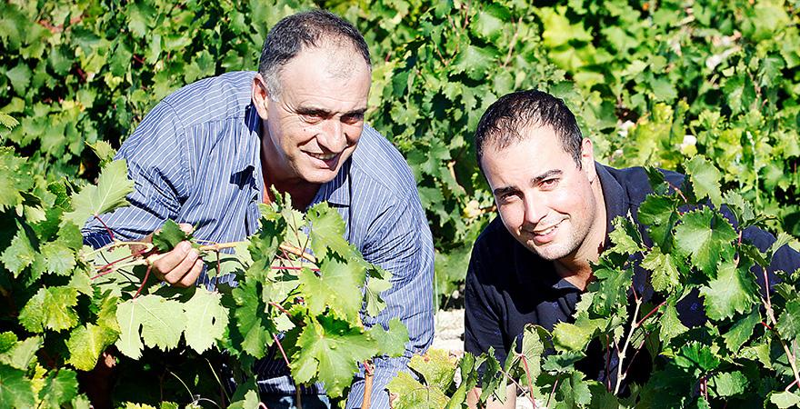 entrevista Ximo y Dani Cabrera | Uvas Cabrera | news especialidades octubre 2017 | agroindustria