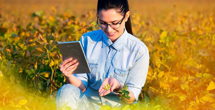 mujer analizando grano en el campo-las granjas inteligentes