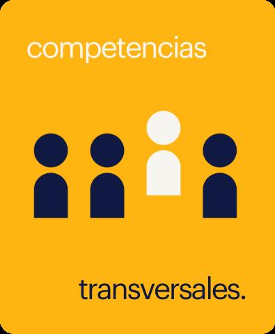 taller de competencias transversales